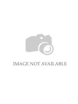 Special Order Lela Rose Bridesmaid Style LR227