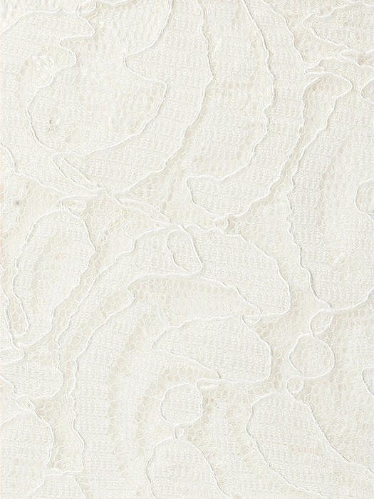 Classic Lace Fabric by the 1/2 Yard
